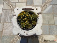 Details of a residential mansion _ landscaping