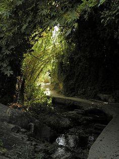 Kato Potamia, a stream in the interior of Naxos, Greece. photo by Ηλιασ