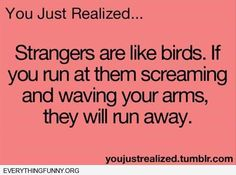 Strangers are like birds. If you run at them screaming and waving your arms, they will run away.