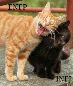 ENFP | INFJ Bahahahahahahaha  This is me and Bill...