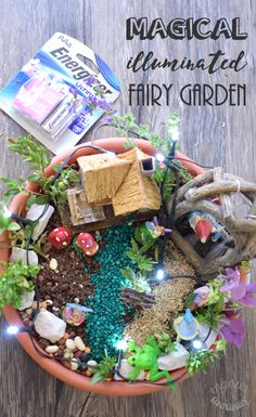 Make this Magical Illuminated Fairy Garden using a few basic supplies. Click the pic for the full tutorial! Diy E Liquid, Fairy Garden Pots, Diy House Projects, Dollar Tree Crafts, Mini Gardens, Fairy Gardens, Creative Play, Mom Blogs, Frugal Living