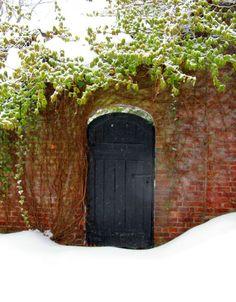 Garden Door in snow