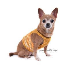 Choke Free Dog Harness Cotton Chihuahua Clothes with D Ring DH2 - Myknitt (1)