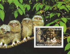 Owl bird with babies rotary #international congo 2002 mnh #stamp #sheetlet,  View more on the LINK: 	http://www.zeppy.io/product/gb/2/142122411954/