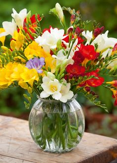 Spring is here.a Freesia bouquet Freesia Bouquet, Freesia Flowers, Ikebana, Beautiful Flower Arrangements, Floral Arrangements, Growing Flowers, Planting Flowers, Flowers Garden, Types Of Flowers