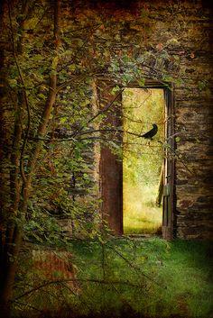 Looks like the doorway to the Secret Garden. My favorite childhood book! Gaia, Portal, Beaux Villages, My Secret Garden, Secret Gardens, Secret Places, Garden Gates, Doorway, Windows And Doors