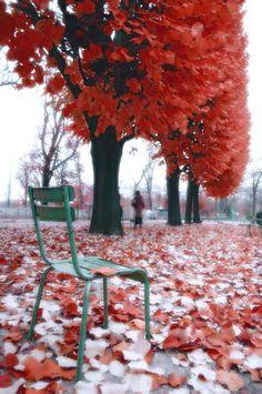 Fall in Paris, France   PicsVisit
