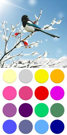 Winter landscape color palette for seasonal theory Winter color type