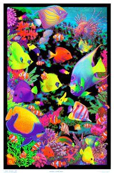 Living Reef Flocked Blacklight Poster Art Print Blacklight Poster at AllPosters.com