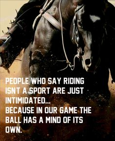 ♡ Literally, like you control your baseball but who REALLY controls the horse? ♡