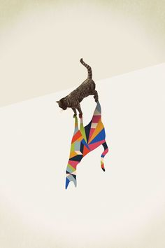 Walking Shadow, Cat by Jason Ratliff http://society6.com/ratliff/Walking-Shadow-3_Print