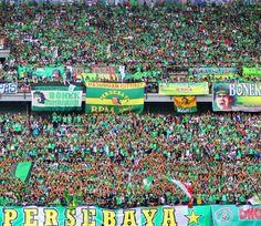 Kami Bukan Ultras atau Hooligan #Bonek #Mania