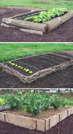 Organic Vegetable Gardening Lots of DIY raised garden bed ideas and tutorials so you can design and build your dream raised vegetable garden beds. Pros of raised garden bed Elevated Garden Beds, Raised Garden Bed Plans, Building A Raised Garden, Raised Beds, Cheap Raised Garden Beds, Raised Gardens, Farm Gardens, Raised Bed Garden Layout, Garden Farm