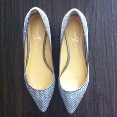 Ivana Trump Brand New Itannulia Dress Flats Silver multi texture. Never worn. Beautiful shoes! Ivanka Trump Shoes Flats & Loafers