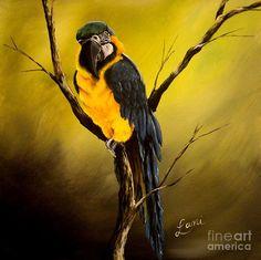 Portrait of a Macaw by Lani Walling-- Art Prints