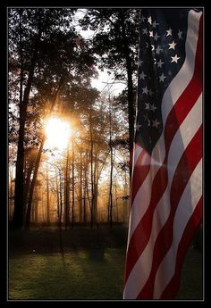 American flag and beautiful photo I Love America, God Bless America, America 2, American Spirit, American Pride, American Art, Patriotic Pictures, American Flag Pictures, Patriotic Quotes