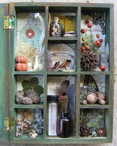 Nature walk shadow box by Kathy McElroy, via Flickr