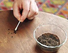 Utilisez le marc de café pour masquer les rayures sur les meubles
