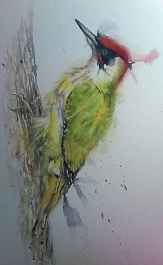 Green Woodpecker Original Painting By Sylvia Farrow - Arthouse Gallery