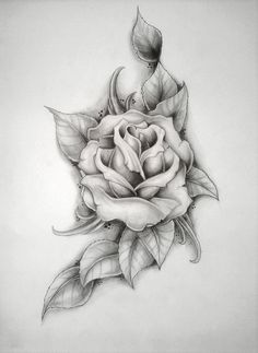 Possible rose tattoo sketch Like the soft lines and the leaves, not sure if I can picture it in color though.
