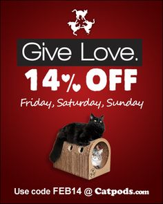 Catpods Valentine's Day Coupon Code http://www.floppycats.com/catpods-valentines-day-coupon-code.html
