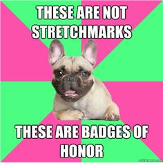 """[Image description: french bulldog on alternating pink and green background. Above text reads """"These are not stretchmarks"""". Bottom text reads """"These are badges of honor!"""" End description]"""