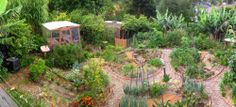 'Happy Earth' suburban food forest garden, Australia.