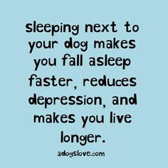 I knew it - sleeping with your dog is healthy!