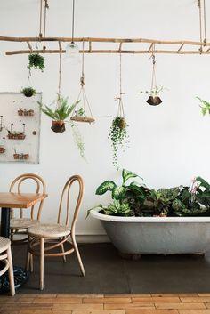 Ladder boven de scheiding keuken-living voor hangplantjes
