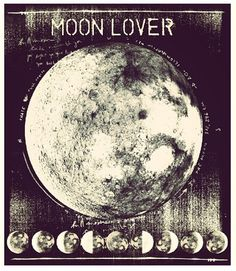 Moon Lover. WILD WOMAN SISTERHOOD™ #wildmoonwoman #wildwomansisterhood