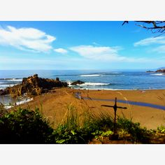 Oregon Coast, one of my favorite places to go :)