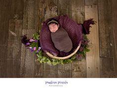 ¡Qué lindura de bebé! Esta foto nos la comparte nuestra amiga @Paulina Pineda Fotografía de Arianna bebé, en su sesión de New Born, a sus 8 días de nacida! 😍  ___________________________ ❝Eɴ ᴇʟ ғᴏɴᴅᴏ, sᴀʙᴇs ϙᴜᴇ ᴘᴜᴇᴅᴇs ᴄᴏɴᴛᴀʀ ᴄᴏɴ ɴᴏsᴏᴛʀᴏs❞  #YOelijoCANVACKS #BackdropsMexico #BabyPhotographyMx #BabyPhotography #BackdropsMx #FondosFotograficosMexico #bestbackdropsmexico #FondosParaEstudios  Distribuidores No. 1 de fotos impresas