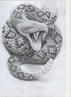 Chicano Art Tattoos, Body Art Tattoos, Hand Tattoos, Sleeve Tattoos, Cool Tattoos, Snake Sketch, Snake Drawing, Snake Art, Anubis Tattoo