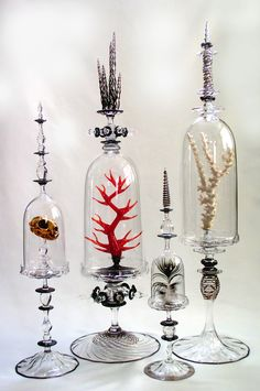 Elegant display Cabinet of Curiosities: Andy Paiko Taking note of the beauty in the simplicity of things. Or the unusual. The Bell Jar, Bell Jars, Decoration Entree, Cabinet Of Curiosities, Deco Originale, Apothecary Jars, Glass Domes, Altered Art, Decorative Bells