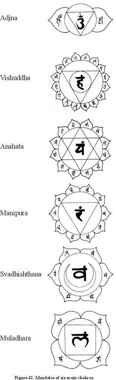 Shalagram - Knowledge - The Mystic Cosmos - Appendix I
