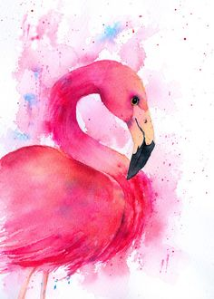Pink Flamingo in Watercolor #illustration #flamingo