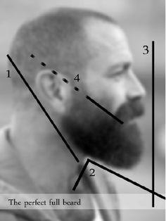 Photo of the perfect full beard.