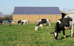 agriculture energie solaire