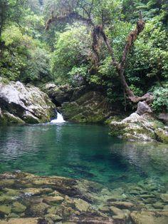 Riwaka River Resurgence - Riwaka