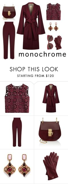 """One colour head to toe"" by charlottes-styles on Polyvore featuring mode, Alberta Ferretti, Elie Saab, Chloé, Erickson Beamon, Mark & Graham, Salvatore Ferragamo, burgundy en charlottesstyles"