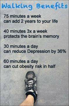 Fitness Workouts, Fitness Diet, Health Fitness, Fitness Facts, Workout Exercises, Fitness Quotes, Health Facts, Health And Nutrition, Health Tips