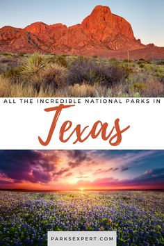The national parks in Texas provide an excellent opportunity to escape the city and enjoy some peace and quiet. Learn more about the Texas national parks. Travel Articles, Travel Tips, Texas National Parks, Will You Go, Outdoor Woman, Get Outside, Usa Travel, Travel Inspiration, North America