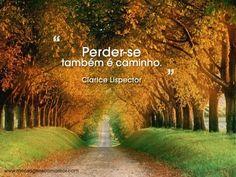 """""""Perder-se também é caminho."""" #ClariceLispector"""