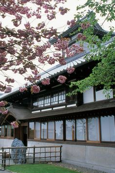 Ginrinsou--Ryokan in Otaru, Hokkaido, Japan Places Around The World, Around The Worlds, Travel Nursing Agencies, Lets Run Away Together, Cherry Blossom Japan, Cherry Blossoms, Tokyo Travel, Asia Travel, Winter Travel