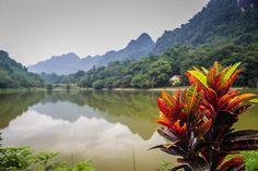 Cuc Phuong National Park Vietnam Buffalo Run http://www.divergenttravelers.com/vietnams-great-adventure-buffalo-run/ #vietnam #divergenttravelers #buffalorun #bestblog #postoftheday #travelpost #Adventure #mustsee #mustdo #photooftheday #cucphuongnationalpark