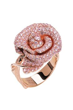 Celebrities who use a Dior Joaillerie Bague Bagatelle Ring. Also discover the movies, TV shows, and events associated with Dior Joaillerie Bague Bagatelle Ring. Dior Jewelry, Jewelry Gifts, Jewelry Accessories, Jewelry Design, Unique Jewelry, Dainty Jewelry, Designer Jewelry, Bling Jewelry, Jewelry Ideas