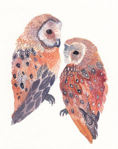 Two Barn Owls No.2 - Archival Print. by United Thread