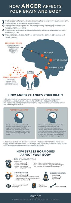 How Anger Affects Your Brain and Body #Dietsforanunderactivethyroid