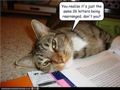 cats and books | read i must don my thinking cat yep in spite of what the cat below has ...