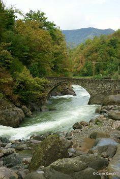 Borçka Düzköy Köprüsü